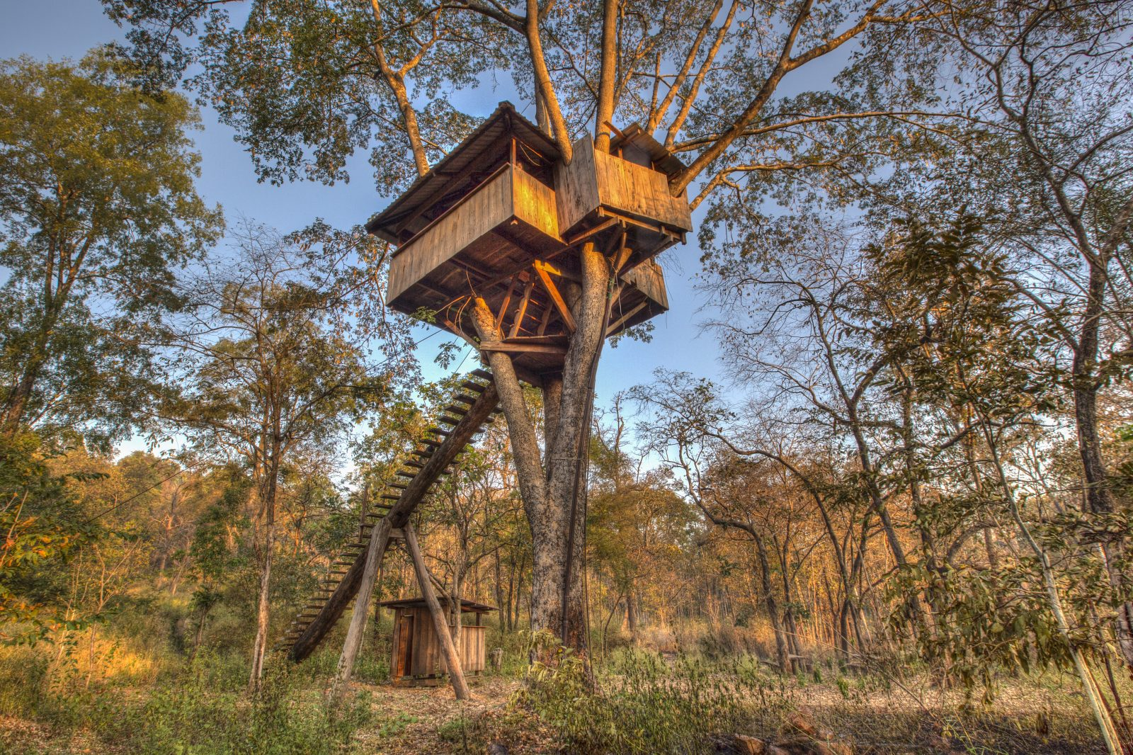 Betreed Treehouse